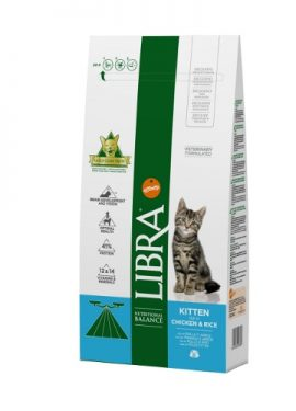 libra kitten gatos