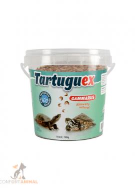 camaroes para tartarugas tartaruguex